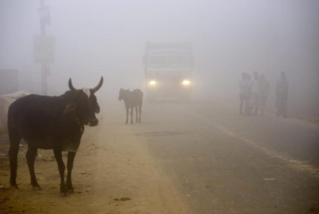 Comerțul cu emisii de dioxid de carbon